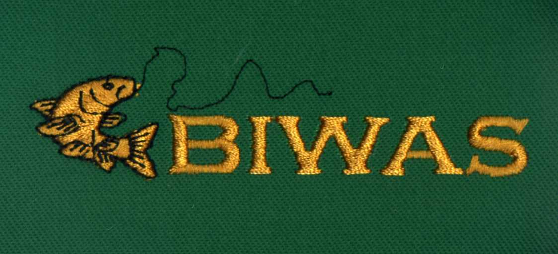 BIWAS Embroidered Hoodie Logo